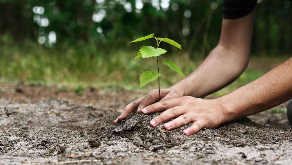 Прикарпатці долучилися до Всеукраїнської екологічної акції